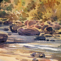 Carson River In Autumn by Donald Maier