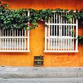 Cartagena Street by Infinite Pixels