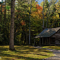 Carter Shields Cabin by Barbara Bowen