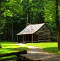Carter Shields Cabin by Darin Williams