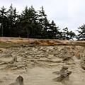 Carved Sandstone Along The Oregon Coast - 2 by Christy Pooschke