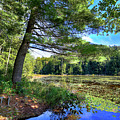 Cary Lake In August by David Patterson