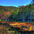 Cary Lake Inlet by David Patterson