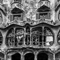 Casa Batllo Black And White by Georgia Fowler