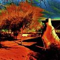 Casa Grande Abstract I by Diana Dearen