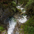 Cascade Creek by Michael Russell
