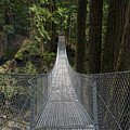 Cascade Falls Suspension Bridge by Michael Russell