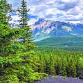 Cascade Mountain by Matthew Kittens