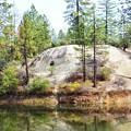 Cascade Shores by Donna Blackhall