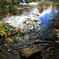 Cascade Springs With Rock by Ron Brown Photography