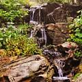 Cascades N Pool by Lori Mahaffey