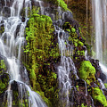 Cascades Of Burney Falls by Anthony Michael Bonafede