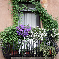 Cascading Floral Balcony by Donna Corless