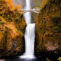 Cascading Gold Waterfall II by Athena Mckinzie
