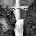 Cascading Waterfall Bw by Athena Mckinzie