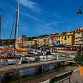 Cassis by Dick Francis