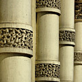 Cast Iron Columns by Cate Franklyn
