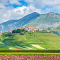 Castelluccio Di Norcia With Beautiful Summer Fields by JR Photography