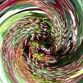 Caster Bean Abstract by Sholeh Mesbah