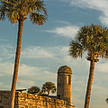 Castillo De San Marcos Dawn II by Joan Carroll