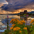 Castle Bliss by James Anderson