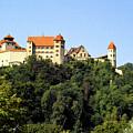Castle Harburg 3 by Pit Hermann