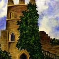 Castle by Michael Vigliotti