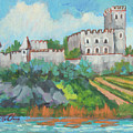 Castle On The Upper Rhine River by Diane McClary