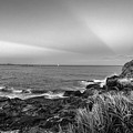 Castle Rock Beach Sunset Sunrays Marblehead Ma Black And White by Toby McGuire