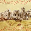 Castle Ward Vintage by Angeles M Pomata