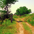 Castledale Farm Road by David King