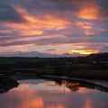 Castlemaine December Dawn by Mark Callanan