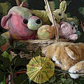 Cat Alert by Grace Rose