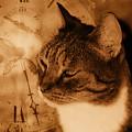 Cat And Clock by Guna Andersone
