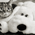 Cat And Dog In B W by Andee Design