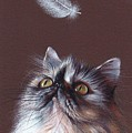 Cat And Feather by Elena Kolotusha