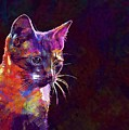 Cat Background Image Cute Red  by PixBreak Art