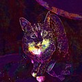 Cat Contemporary Design Brown  by PixBreak Art