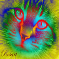 Cat Fluorescent by Rosa Maria Intorre