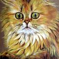 Cat by Ilaria Andreucci