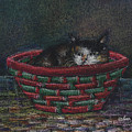 Cat In A Basket by Arline Wagner