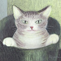 Cat In A Bucket by Kazumi Whitemoon