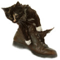 Cat In Boot by Cliff Norton