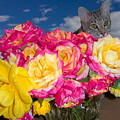 Cat In Roses by Laura Smith