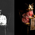 Cat - It's Our Birthday - 1914 - Side By Side by Mike Savad