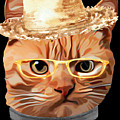 Cat Kitty Kitten In Clothes Yellow Glasses Straw by Trisha Vroom