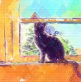 Cat Looking Out The Window by Nora Martinez