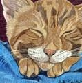 Cat Nap by Anita Putman