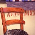 Cat Nap by Steve Outram