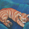 Cat Napping by Gail Daley